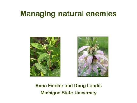 Managing natural enemies