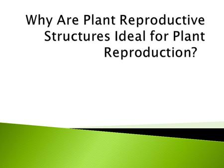 Why Are Plant Reproductive Structures Ideal for Plant Reproduction?