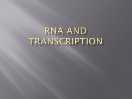 A. There are three key differences between RNA and DNA 1. RNA is single stranded : DNA is double stranded 2. RNA is made of the sugar Ribose – DNA is.