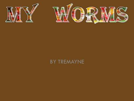MY WORMS BY TREMAYNE.