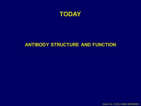 ANTIBODY STRUCTURE AND FUNCTION