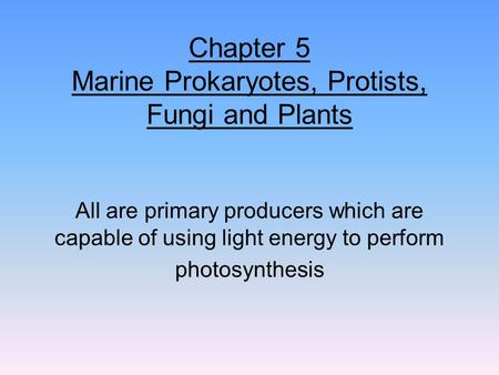 Chapter 5 Marine Prokaryotes, Protists, Fungi and Plants All are primary producers which are capable of using light energy to perform photosynthesis.