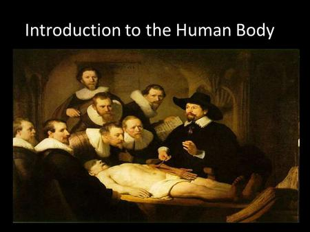 Introduction to the Human Body. Earliest anatomical studies occurred on live humans and animals called vivisection thousands of years ago. Copyright ©