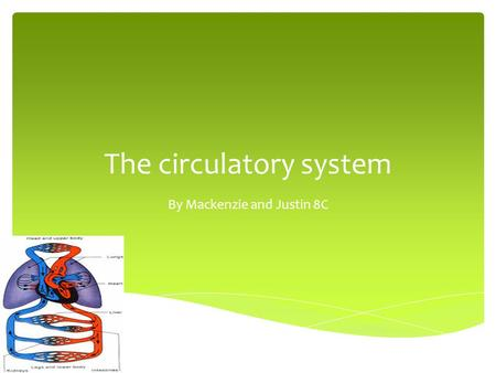 The circulatory system By Mackenzie and Justin 8C.