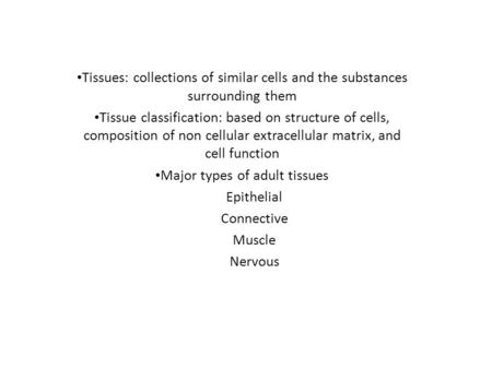 Major types of adult tissues