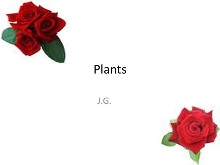 Plants J.G.. These are 5 reasons why plants are important. 1.All of the oxygen available for living organisms comes from plants. 2.It is the oxygen that.