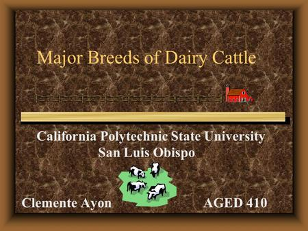 Major Breeds of Dairy Cattle