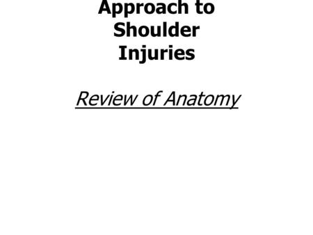Neuromuscular Therapy Approach to Shoulder Injuries Review of Anatomy