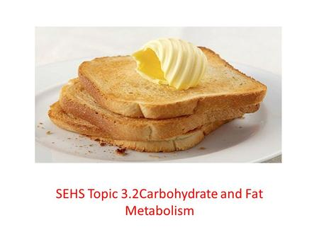 SEHS Topic 3.2Carbohydrate and Fat Metabolism. Outline metabolism, anabolism, aerobic catabolism and anaerobic catabolism Metabolism – all of the biochemical.