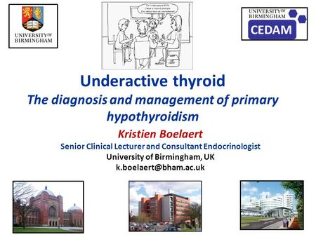 Underactive thyroid The diagnosis and management of primary hypothyroidism Kristien Boelaert Senior Clinical Lecturer and Consultant Endocrinologist University.