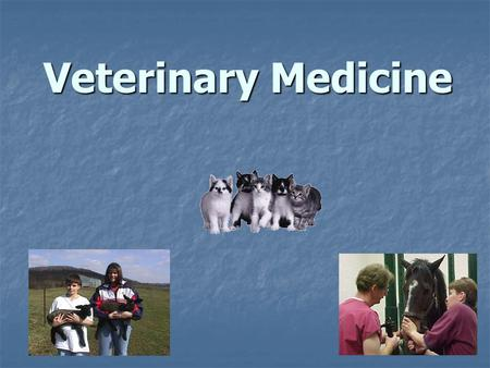 Veterinary Medicine. Why People Consider Veterinary Medicine As a Career  Compassion and respect for animals  Interest in science and medical research.