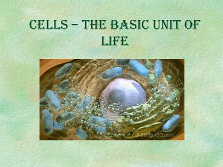 Cells – The Basic Unit of Life The Characteristics of Living Things §All living things have these six characteristics. §Anything without one of these.