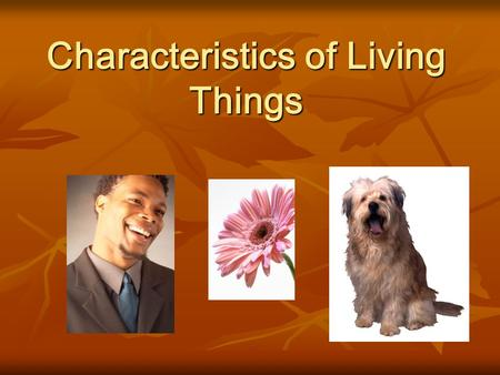 Characteristics of Living Things. Objectives Be able to determine whether something is a living thing or a non-living thing. Be able to determine whether.