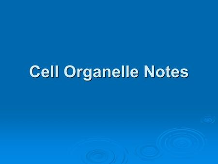 Cell Organelle Notes.
