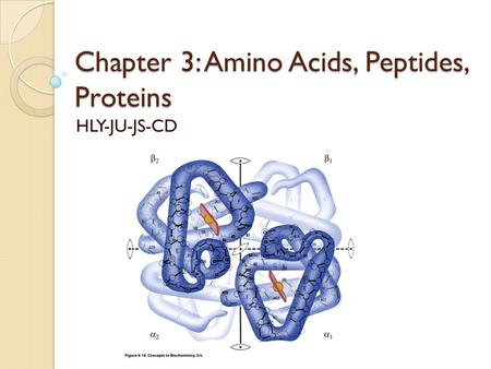 proteins peptides and amino acids lab Last time we looked at the structural characteristics of amino acids and the  peptide bond which joins individual amino acids together to make proteins and.