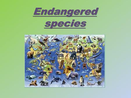 Endangered species. International Union for Conservation of Nature and Natural Resources IUCN Some people have made an environmental institution in 1948.