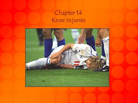 Chapter 14 Knee Injuries. The Knee Largest joint in the body Modified hinge joint One of most vulnerable joints to severe injury of any in the body.