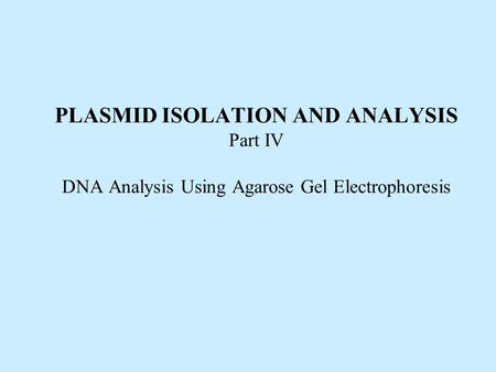 PLASMID ISOLATION AND ANALYSIS Part IV DNA Analysis Using Agarose Gel Electrophoresis.