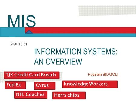 MIS INFORMATION SYSTEMS: AN OVERVIEW TJX Credit Card Breach