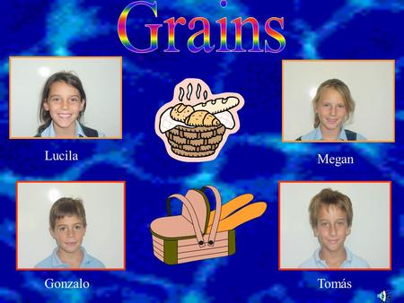 Lucila Megan GonzaloTomás. Grain is one of the four food groups. Some grains are: barley, buckwheat, spaghetti, pasta, popcorn, oats, rice, soy, wheat,