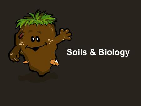 Soils & Biology. Soil Soil isn't dirt, but the accumulation of decayed material over time.