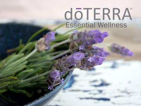 Essential Wellness. WHAT IS AN ESSENTIAL OIL?  Natural aromatic compounds found in plants  Steam distilled or cold pressed extraction  Powerful, safe.