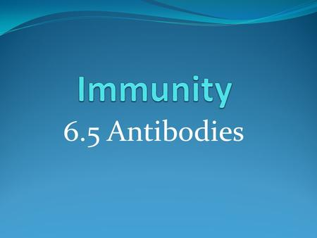 6.5 Antibodies. Learning outcomes Student should be able to understand the following: Antibody structure and the formation of an antigen- antibody complex.