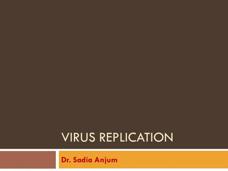 Virus Replication Dr. Sadia Anjum.