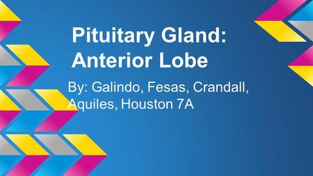 Pituitary Gland: Anterior Lobe By: Galindo, Fesas, Crandall, Aquiles, Houston 7A.