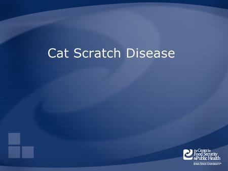 Cat Scratch Disease. Overview Organism History Epidemiology Transmission Disease in Humans Disease in Animals Prevention and Control Actions to Take Center.