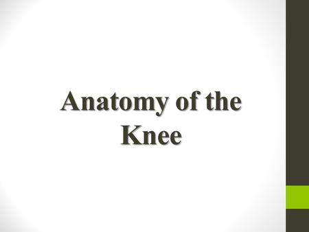 Anatomy of the Knee. Bones of the Knee Consists of 3 Bones: Distal Part of the Femur Proximal Tibia Patella The fibula is not considered part of the knee.
