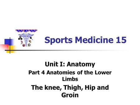 Sports Medicine 15 Unit I: Anatomy Part 4 Anatomies of the Lower Limbs The knee, Thigh, Hip and Groin.