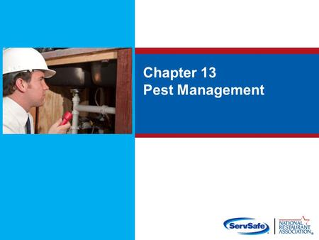 Chapter 13 Pest Management. Objectives: Prevent and control pests Know signs of pest infestation and activity Know how to store pesticides correctly Know.