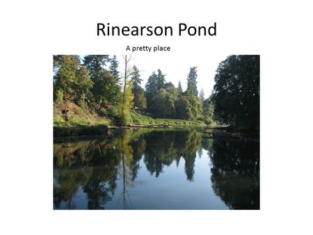 Rinearson Pond A pretty place. This pretty place has been created by the minds and hands of many people. Unfortunately, upon close examination, many plans.