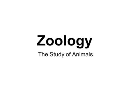 Zoology The Study of Animals. General Characteristics of the Animals Animals are multicellular ……………….. Except for sponges, animal cells are arranged.
