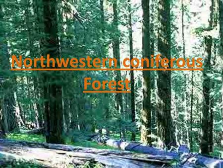 Northwestern coniferous Forest. zoology Coniferous forests cover huge areas but have fewer kinds of plants and animals than any other forests. Though.