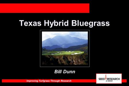 Improving Turfgrass Through Research Texas Hybrid Bluegrass Bill Dunn.