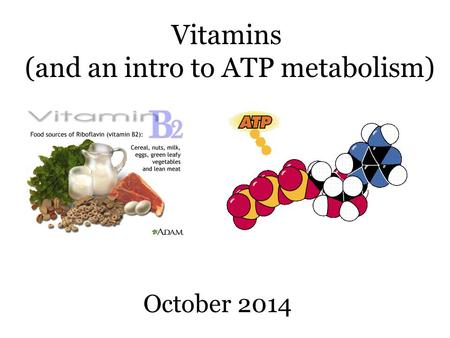 Vitamins (and an intro to ATP metabolism) October 2014.