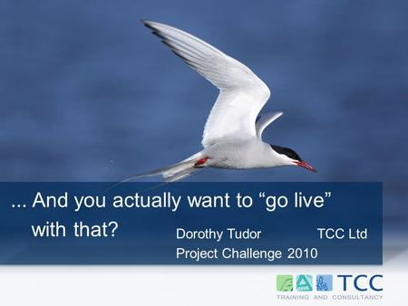 "Dorothy Tudor TCC Ltd Project Challenge 2010... And you actually want to ""go live"" with that?"