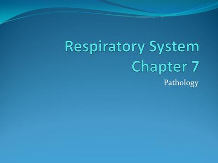 Respiratory System Chapter 7
