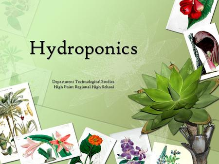 Hydroponics Department Technological Studies High Point Regional High School.