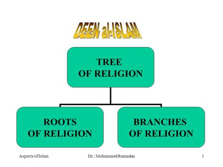 Aspects of IslamDr.: Mohammed Ramadan1 TREE OF RELIGION ROOTS OF RELIGION BRANCHES OF RELIGION.