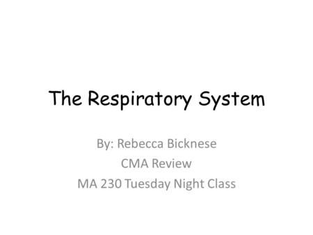 The Respiratory System By: Rebecca Bicknese CMA Review MA 230 Tuesday Night Class.