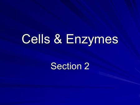 Cells & Enzymes Section 2. Catalysts The rate chemical reaction can be speeded up by raising the temperature or adding a catalyst A catalyst is not changed.