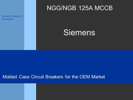 Siemens Siemens Energy & Automation NGG/NGB 125A MCCB Molded Case Circuit Breakers for the OEM Market.