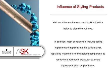 Influence of Styling Products