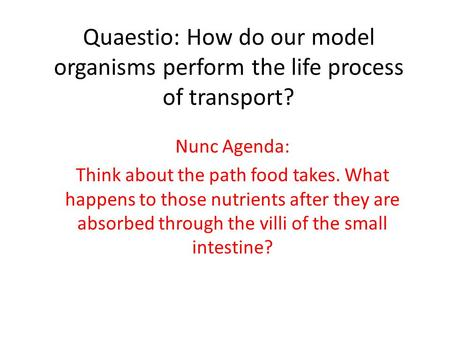 Quaestio: How do our model organisms perform the life process of transport? Nunc Agenda: Think about the path food takes. What happens to those nutrients.