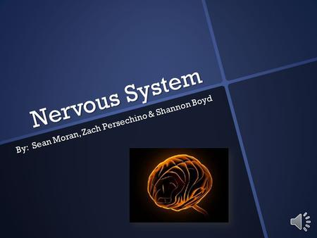 Nervous System By: Sean Moran, Zach Persechino & Shannon Boyd.