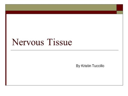 Nervous Tissue By Kristin Tuccillo. What three things is nervous tissue a component of? 1) Brain 2) Spinal Cord 3) Nerves.