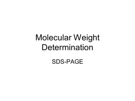 Molecular Weight Determination SDS-PAGE. Electrophoresis Movement of particles by an electric force. Gel is the matrix perfused by buffer salts –Matrix.